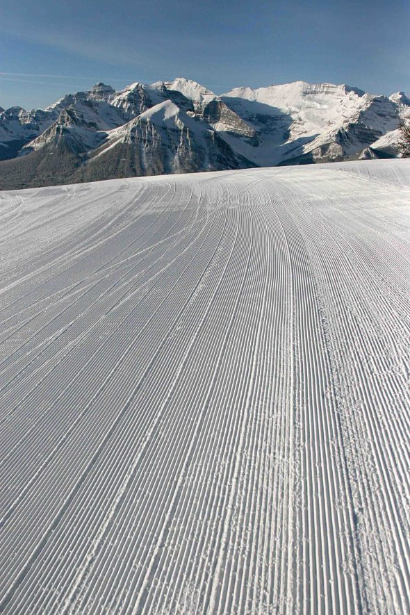 Corduroy delight!